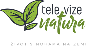 logo_tv natura